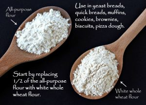 How to Substitute Whole Wheat Flour for All-purpose Flour - If you want to substitute whole wheat flour for all-purpose flour here's a quick rundown on how to use different types of whole wheat flour in your recipes.