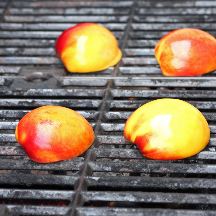 Grilled Peaches with Honey and Lemon Yogurt Sauce - Super easy recipe for grilled peaches. Served with a honey and lemon yogurt sauce, it's decadent, healthy dessert option.